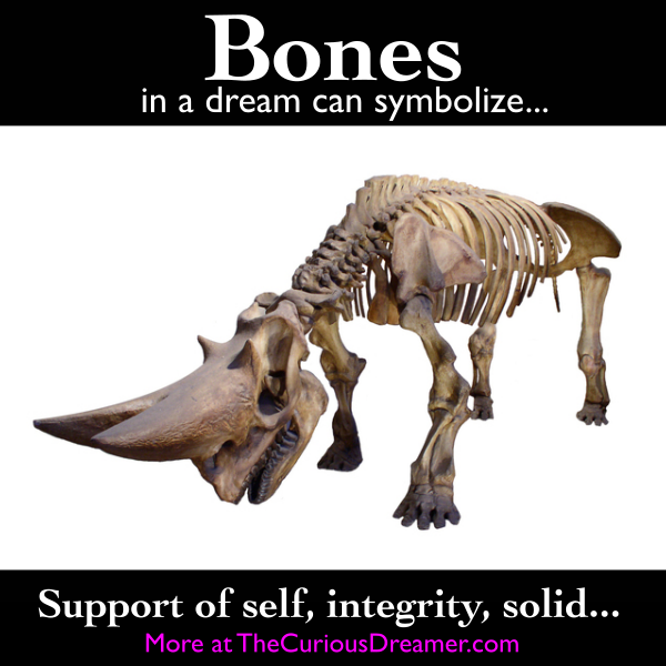 Bones As A Dream Symbol Can Mean More At Thecuriousdreamer Com Dreammeaning Dreamsymbols Dream Symbols Dream Interpretation Dream Meanings