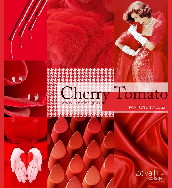 pantone 2018 cherry tomato 2018 pinterest cherry tomatoes. Black Bedroom Furniture Sets. Home Design Ideas