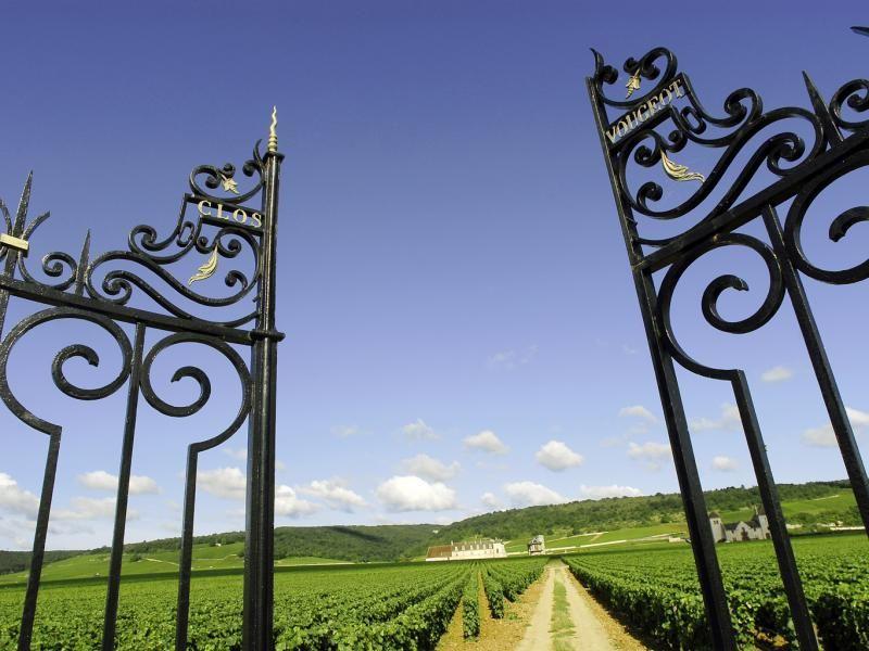 Borgoña - © Alain Doire_Bourgogne Tourisme