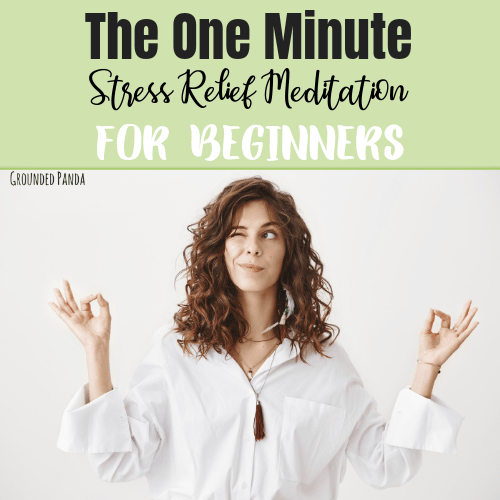 The One Minute Stress Relief Meditation for Beginners ...