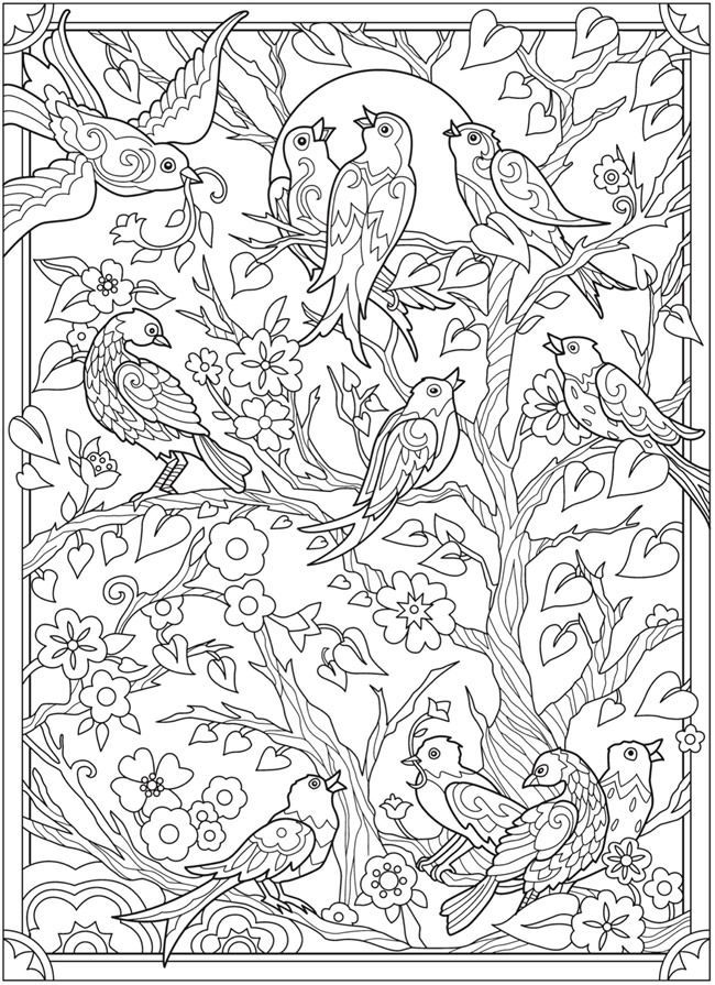 Welcome To Dover Publications Bird Coloring Pages Detailed Coloring Pages Coloring Pages