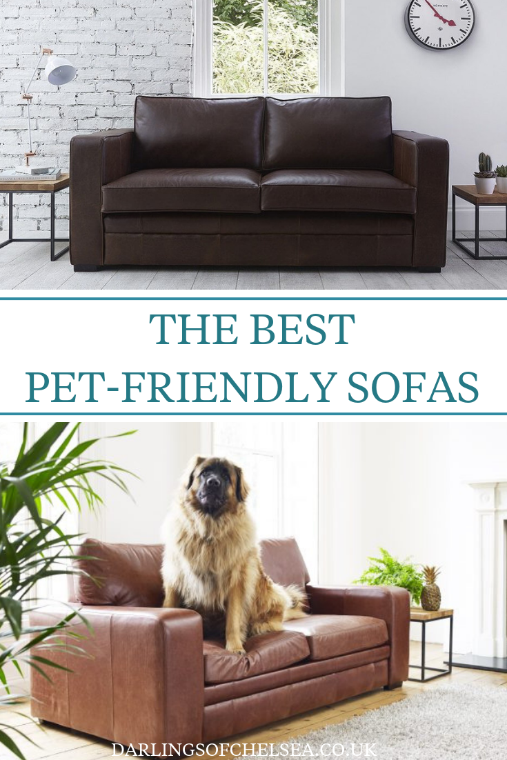 Fabric And Leather Sofas For Pet Lovers Cool Couches Modern
