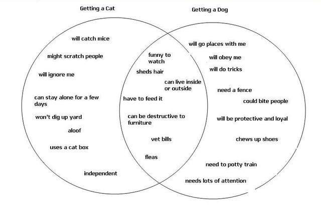 How To Brainstorm For Your Next Essay With A Venn Diagram Venn Diagram Compare And Contrast Essay Examples