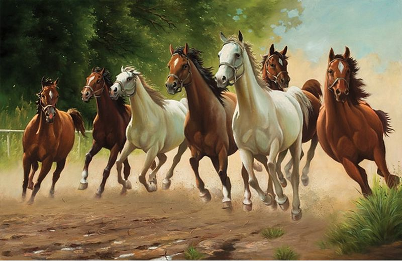 Horses Horses Animal Paintings Animals
