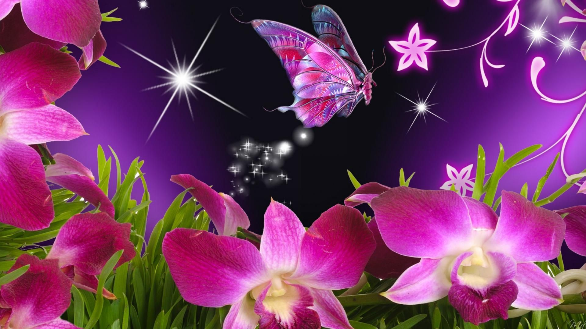 Pin By Carrabags On T D Wallpaper Nature Flowers Butterfly Wallpaper Flower Wallpaper