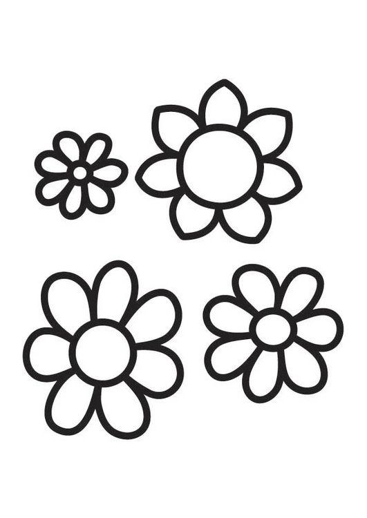 Kleurplaat bloemen | handletteren | Pinterest