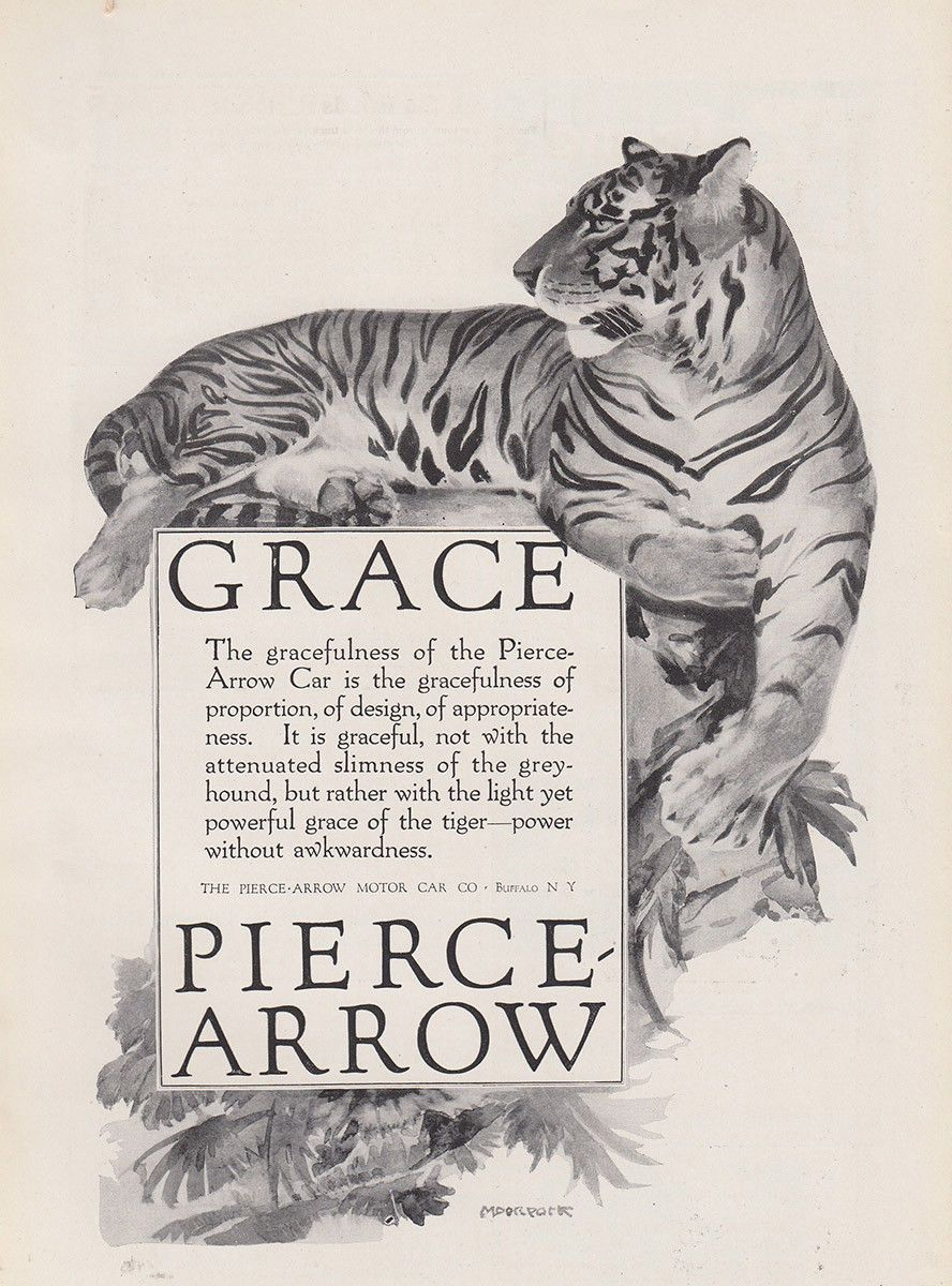 Pin by J.E. Hart on Cats in Advertising Motor car, Cats