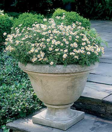 Garden Planter: Cast Stone Urn