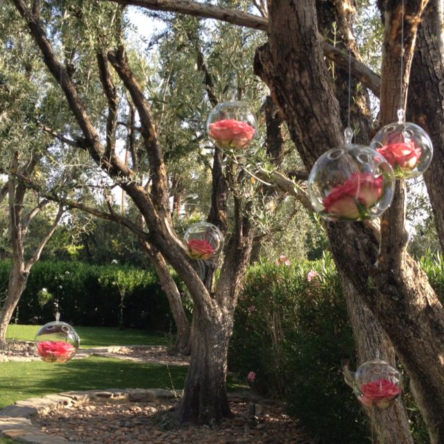 Hanging orbs at ceremony site