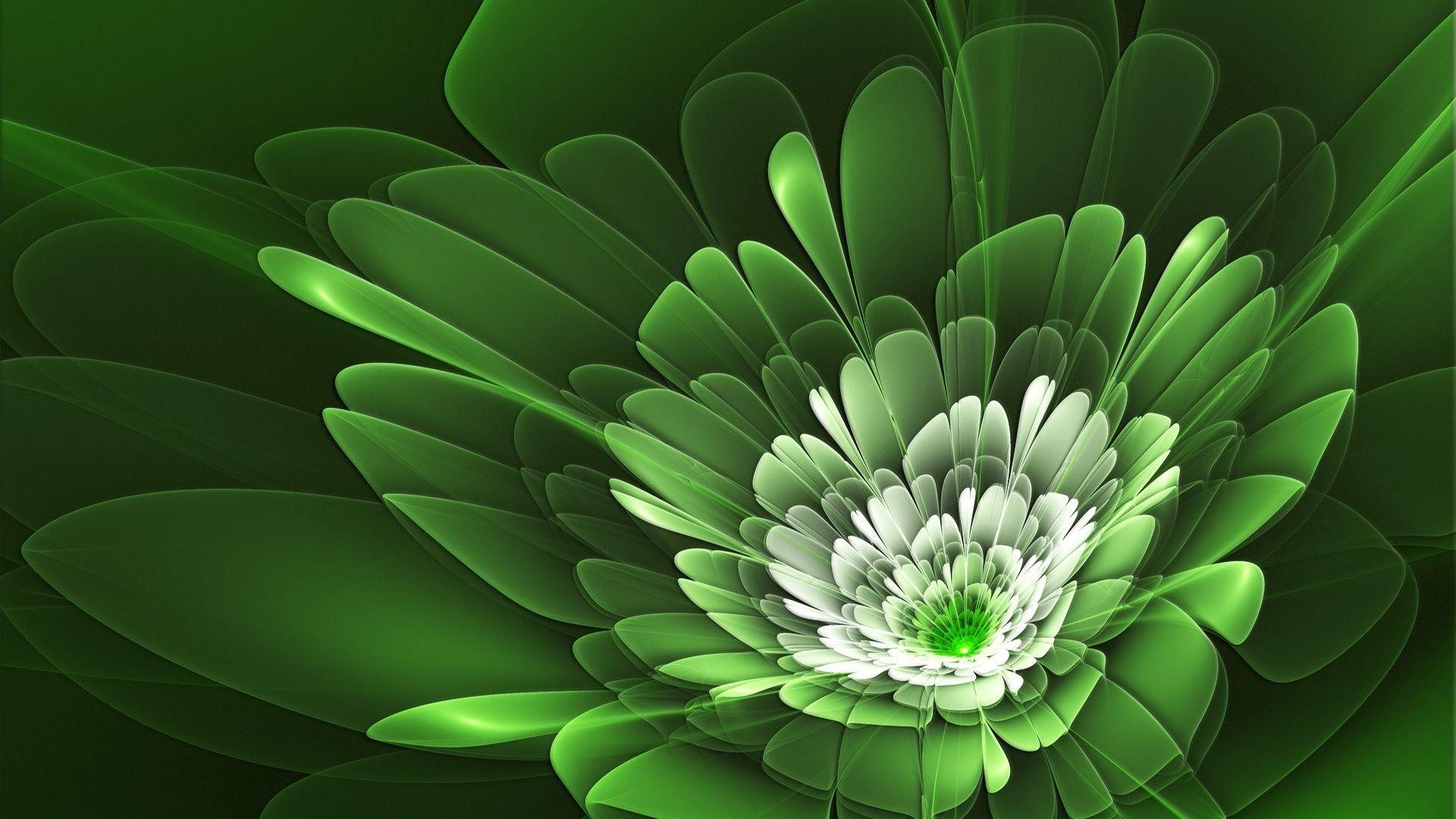 green, wallpaper, petals, flower, floral Green flowers