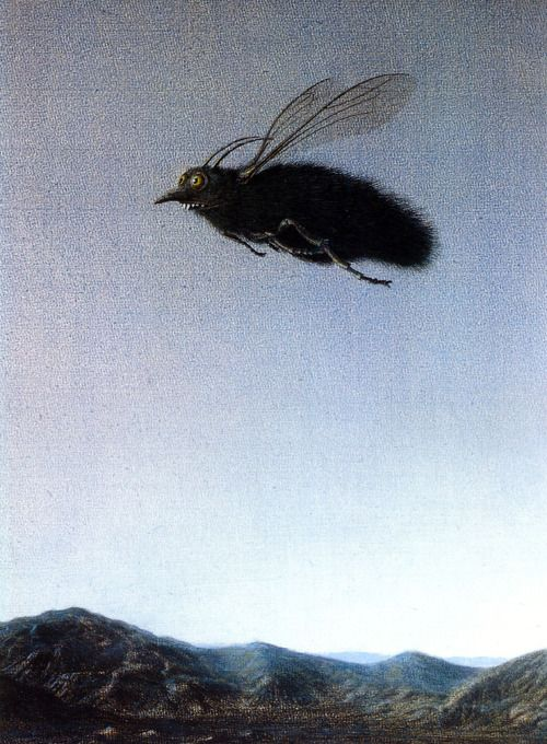 hnnhmcgrath: Michael Sowa - Fly
