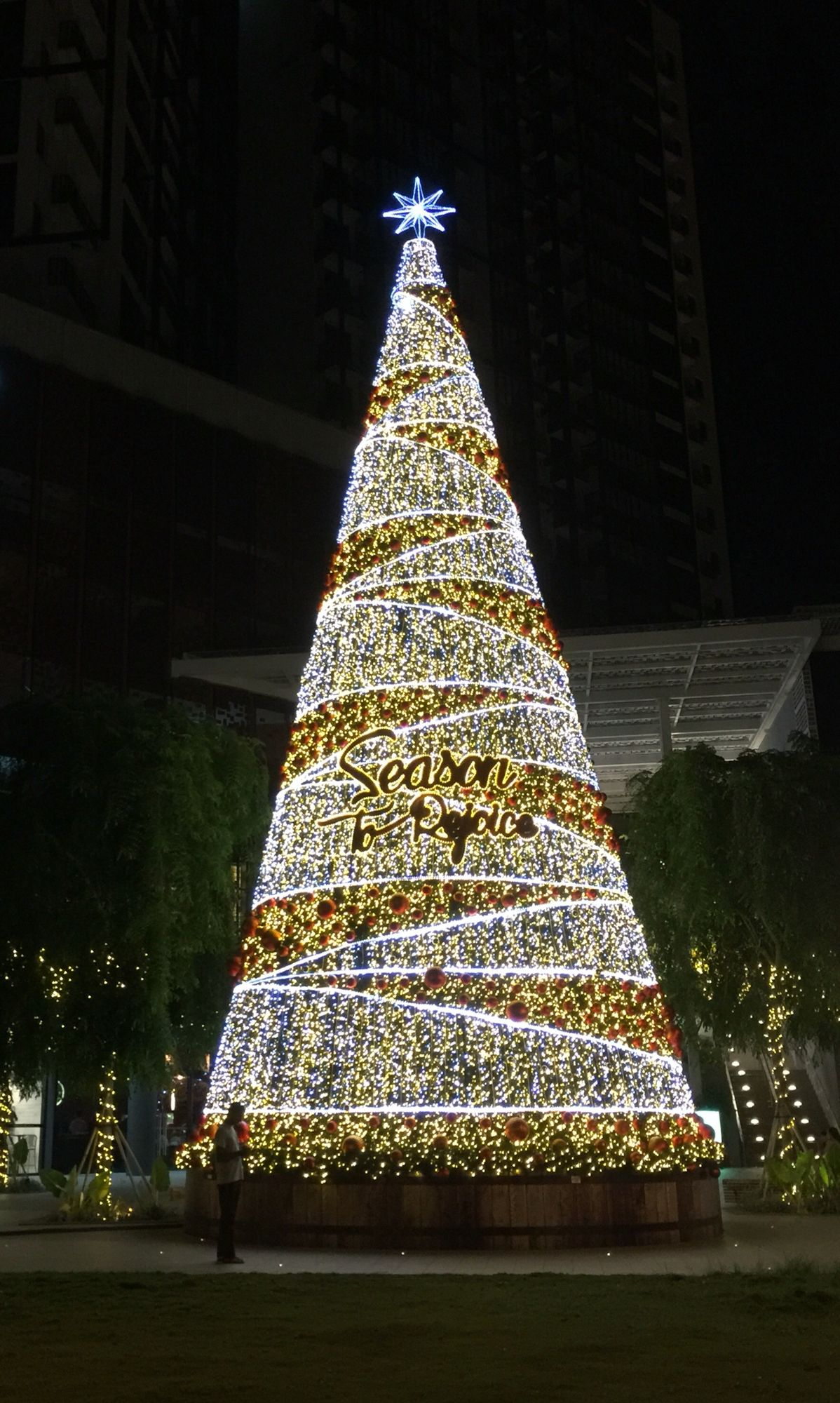 Christmas in Singapore- 2015