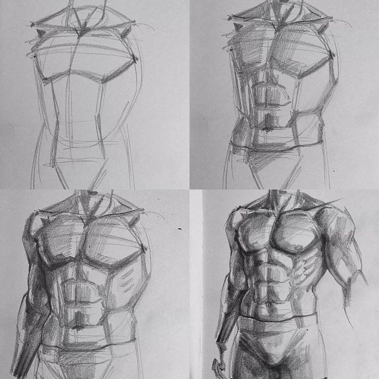 Artist Ayta Armaan Aytcarmagan Drawing Anatomy Art