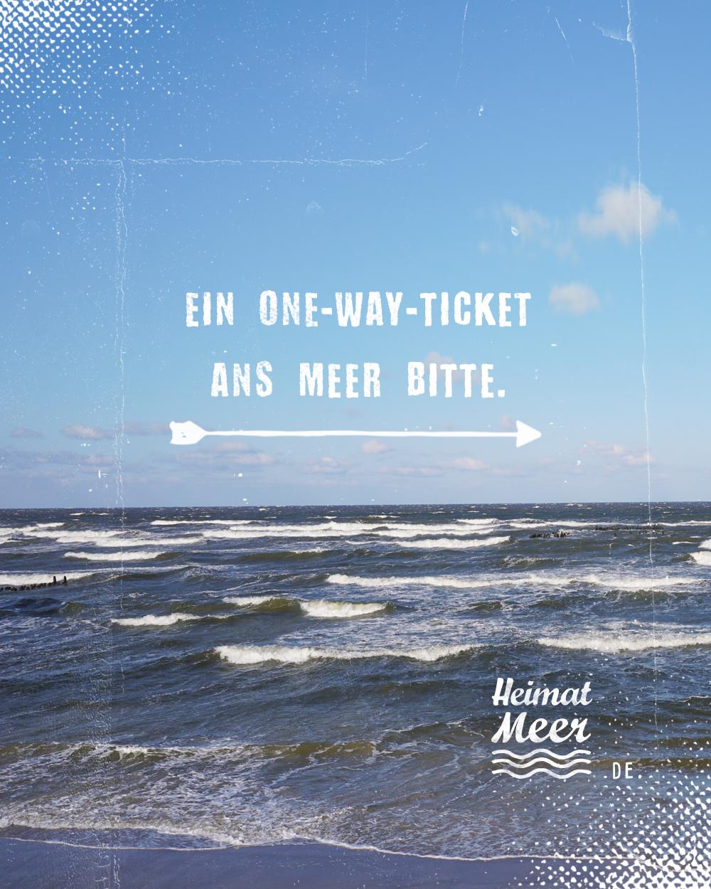 One Way Ticket Ans Meer Bitte Heimatmeer Für Alle