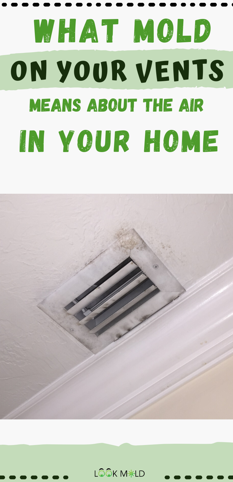 How To Remove Mold From Air Conditioning Vents in 2020