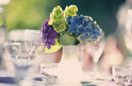 Purple Blue And Green Flowers In Small White