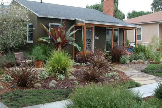 Drought Tolerant Garden By Max Hgtv Gardens Low Maintenance