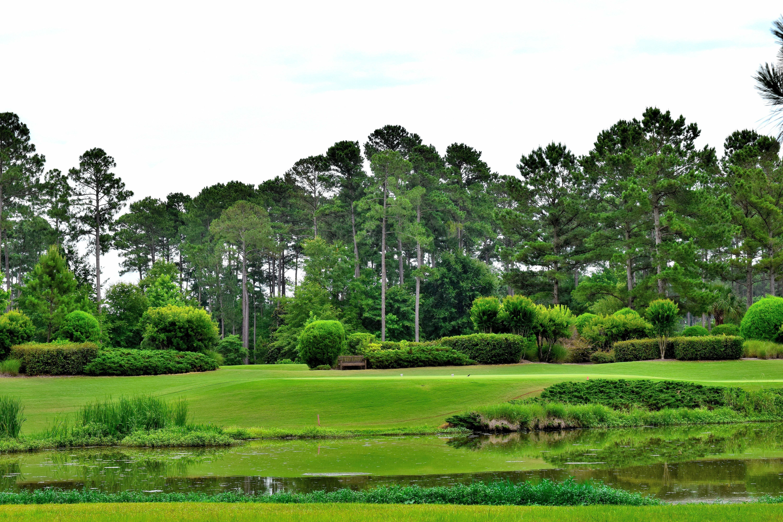 36+ Berkeley hall golf club bluffton sc info