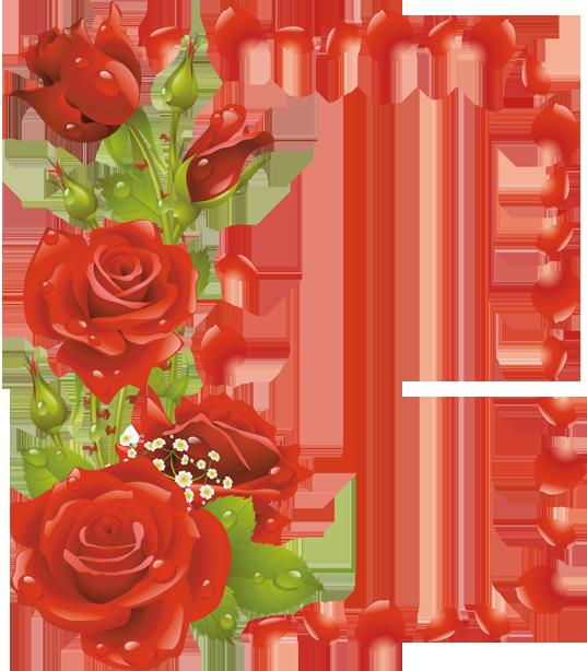 صور اطارات مع الورود 2019 سكرابز ورود للتصميم 2019 اطارات ورود مفرغة للتحميل مباش Flower Border Beautiful Red Roses Flower Arrangements