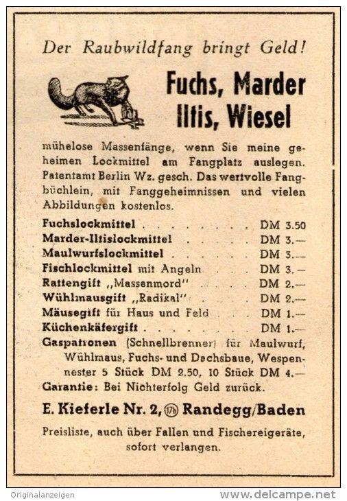 Original Werbung Anzeige 1948 Raubwildfang Kieferle Randegg