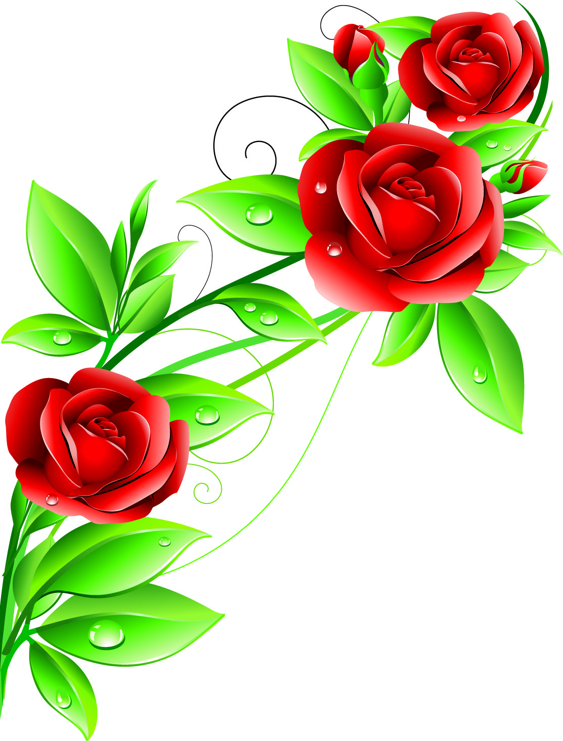 free vector beautiful flowers 02 vector graphic available for free