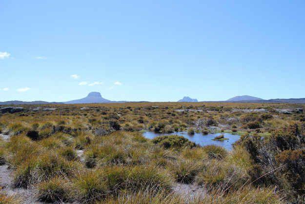 L'Overland Trek, Tasmanie, Australie