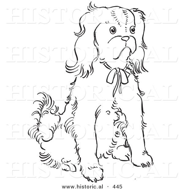 Free Coloring Pages Of King Charles Spaniels