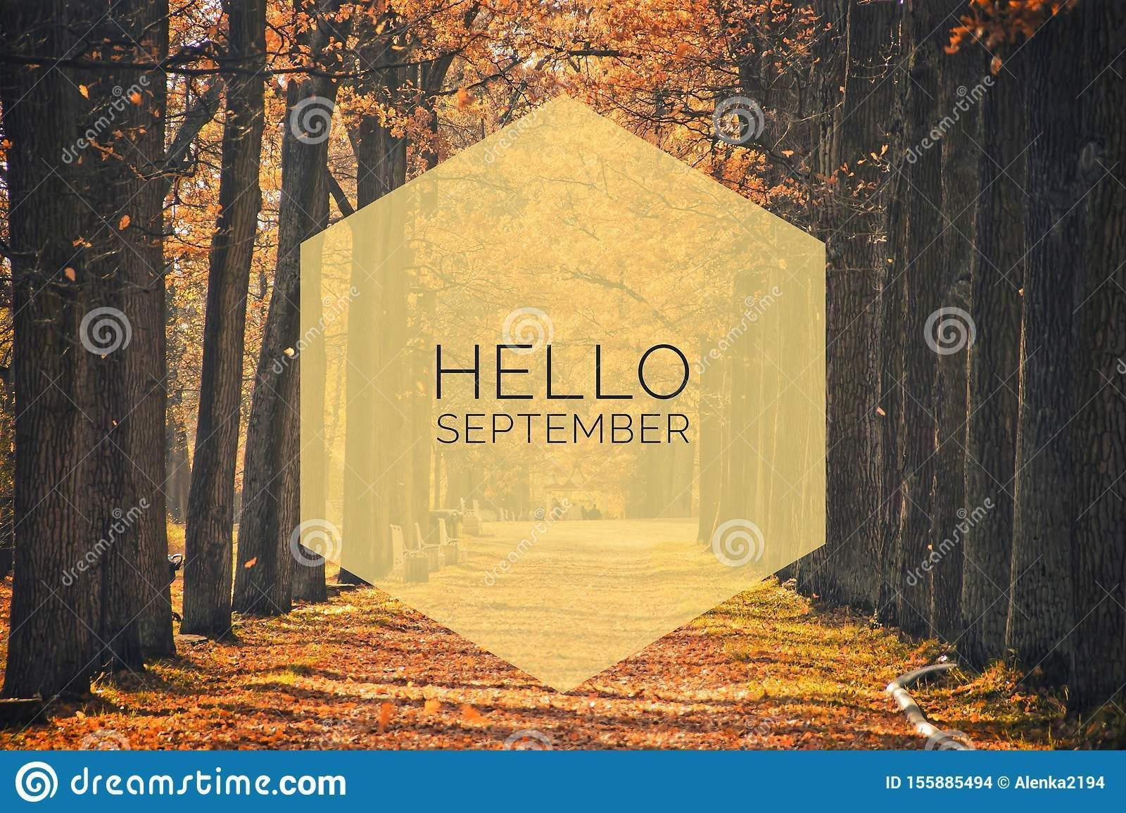 Photo about Hello September banner. New month. Greeting card. Golden autumn. The text in the photo. Seasons. Trees in the park. City Park. Autumn Park. Image of golden, autumn, leaves - 155885494 #helloseptember Photo about Hello September banner. New month. Greeting card. Golden autumn. The text in the photo. Seasons. Trees in the park. City Park. Autumn Park. Image of golden, autumn, leaves - 155885494 #helloseptember Photo about Hello September banner. New month. Greeting card. Golden autumn. #helloseptember