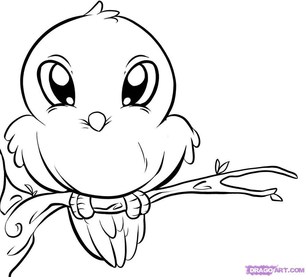 ini cute bird coloring pages httpwwwprintablesfreecom - Easy Printable Coloring Pages