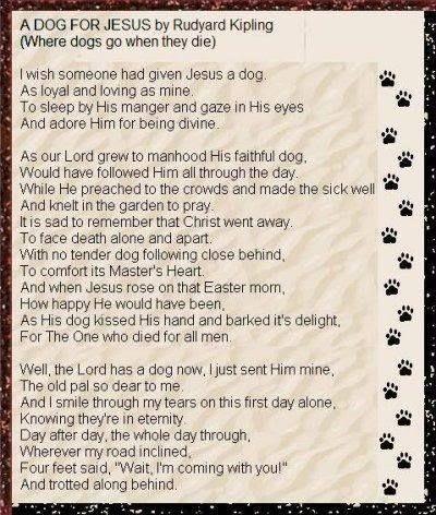 Kipling S Loss Of A Dog Poem