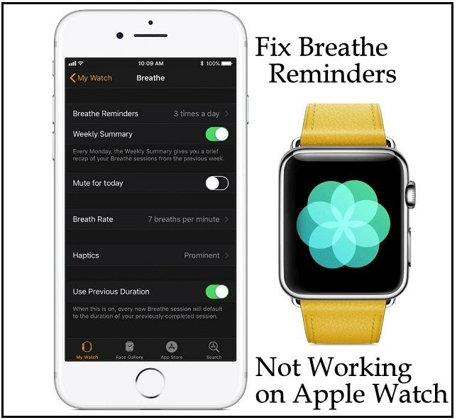 Fix Breathe Reminders Not Working on Apple Watch