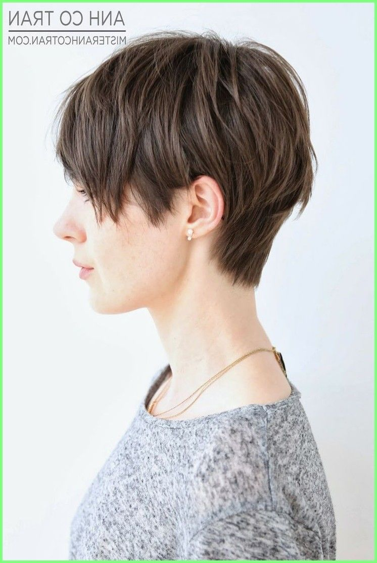 Kurze Frisuren 16 Grosse Kurze Shaggy Frisuren Fur Frauen Haar 2018 Haartrends Kurz Thick Hair Styles Pixie Haircut For Thick Hair Haircut For Thick Hair