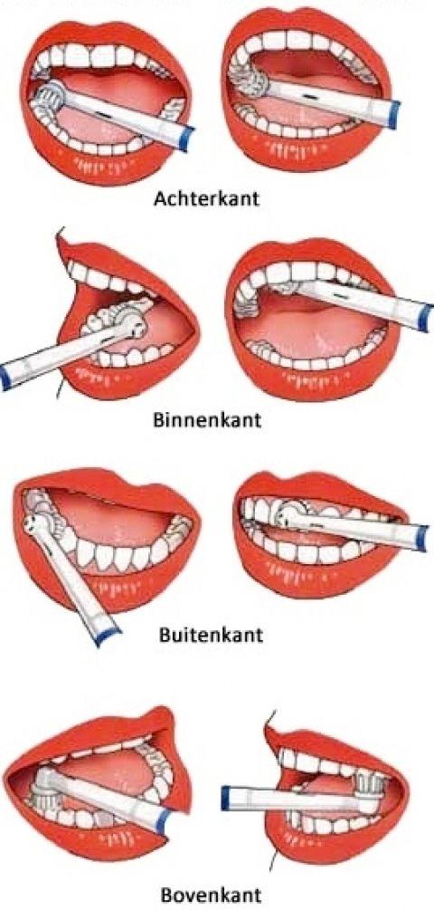 Tanden poetsen tandarts kleurplaten pinterest for Garage ad ugine