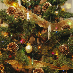 How To Decorate A Christmas Tree Professionally With Ribbon.Professionally Decorated Christmas Trees How To Decorate A