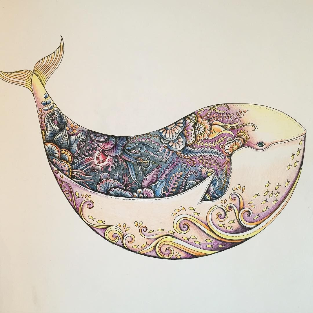 Chromatic Lass On Instagram One Of My Favourites From Johannabasford The Lostocean Whale Lostocean Joha Arte Del Oceano Ballenas Libro De Colores
