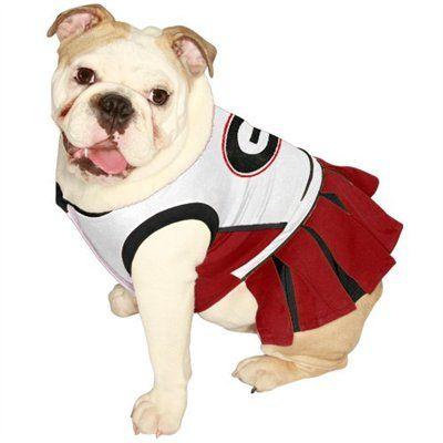best sneakers 5bb78 8d0c2 Georgia Bulldogs Pet Cheer Dress, how can you resist making ...