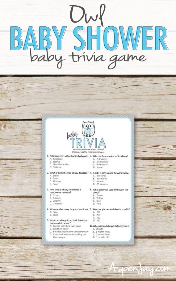 Blue Owl Baby Shower Trivia Game – Instant Printable Download – Owl Baby Shower Game – Blue Baby Trivia Game