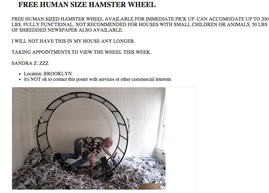 Where can one get a stranger | Hamster wheel, Funny ...