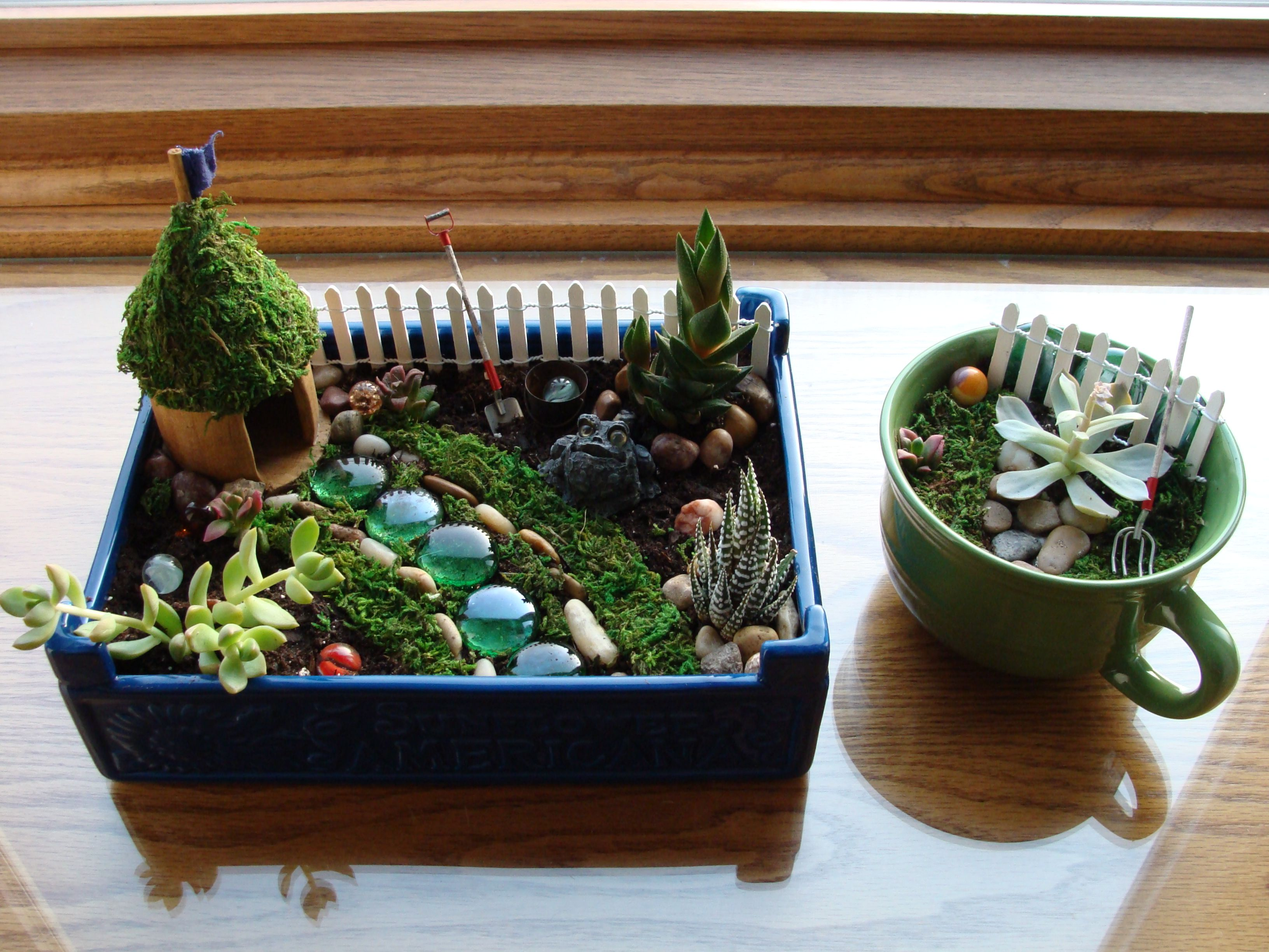 Indoor fairy garden and teacup garden For the Home Pinterest