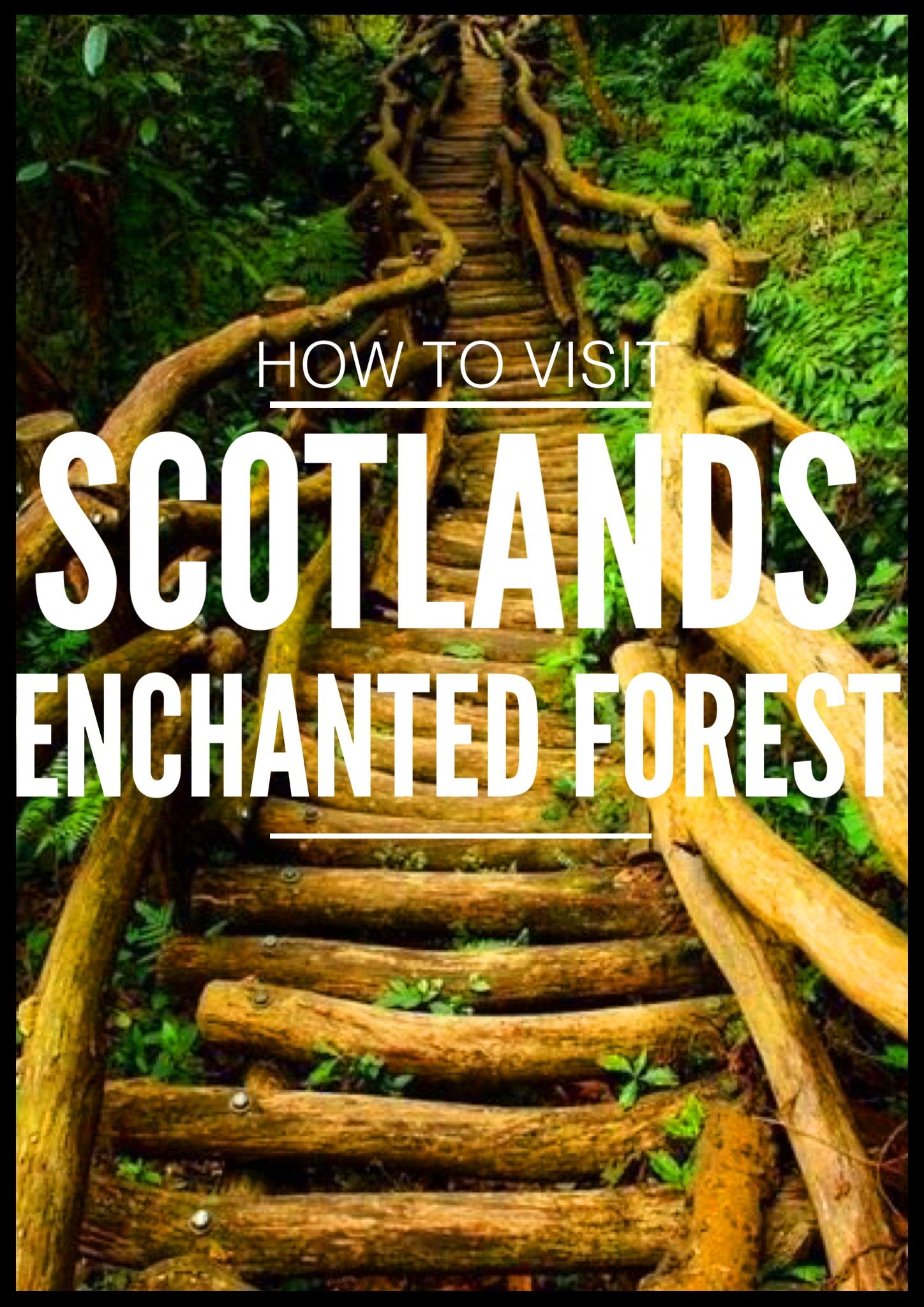 M 225 S De 25 Ideas Incre 237 Bles Sobre Enchanted Forest Scotland