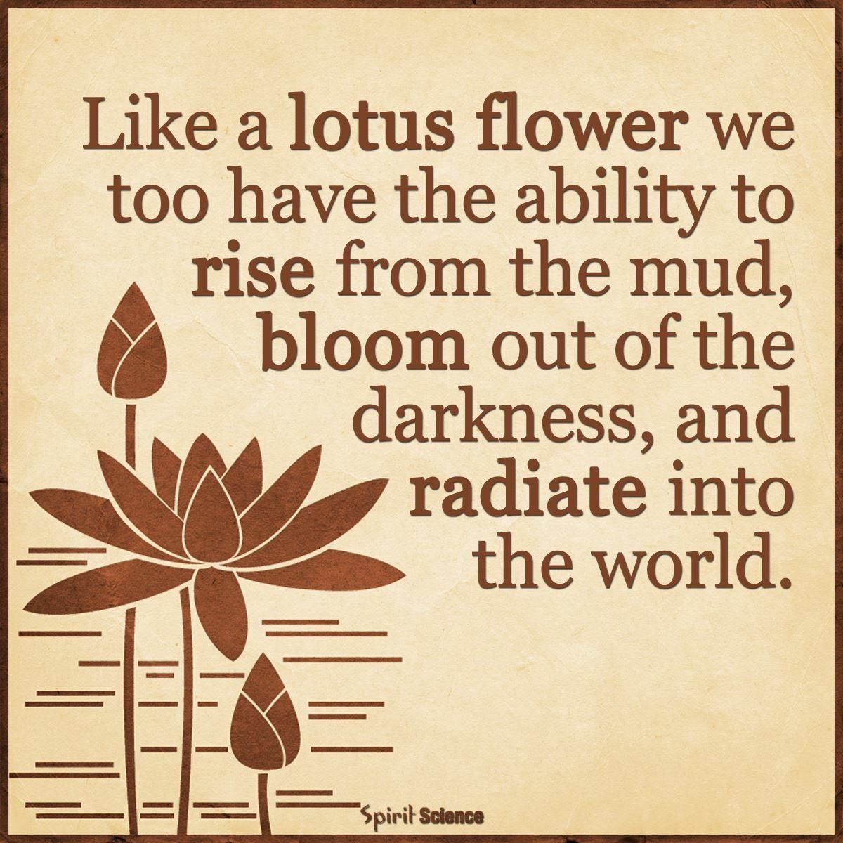 Pin by april wise on mantras pinterest discover ideas about lotus flowers izmirmasajfo