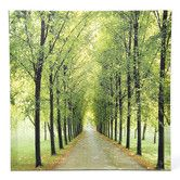 Found it at Wayfair - Path of Life Photographic Print on Wrapped Canvas