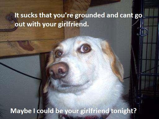 Girlfriend Dog