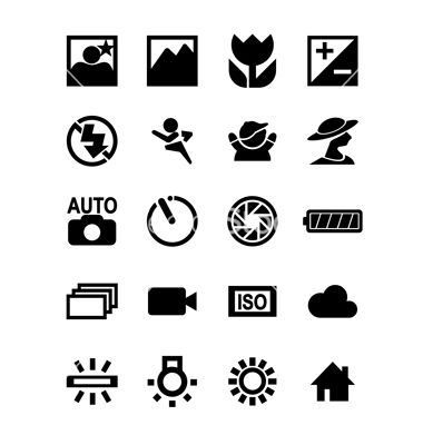 Dslr Camera Function Icon Vector Image On Vaderdag