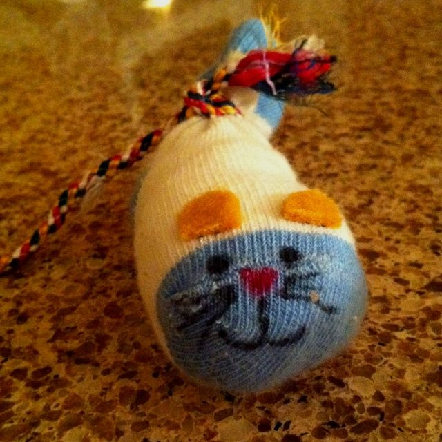 How To Make A Cat Toy From A Baby Sock Ehow Cat Toys Baby Socks Pot Belly Pigs
