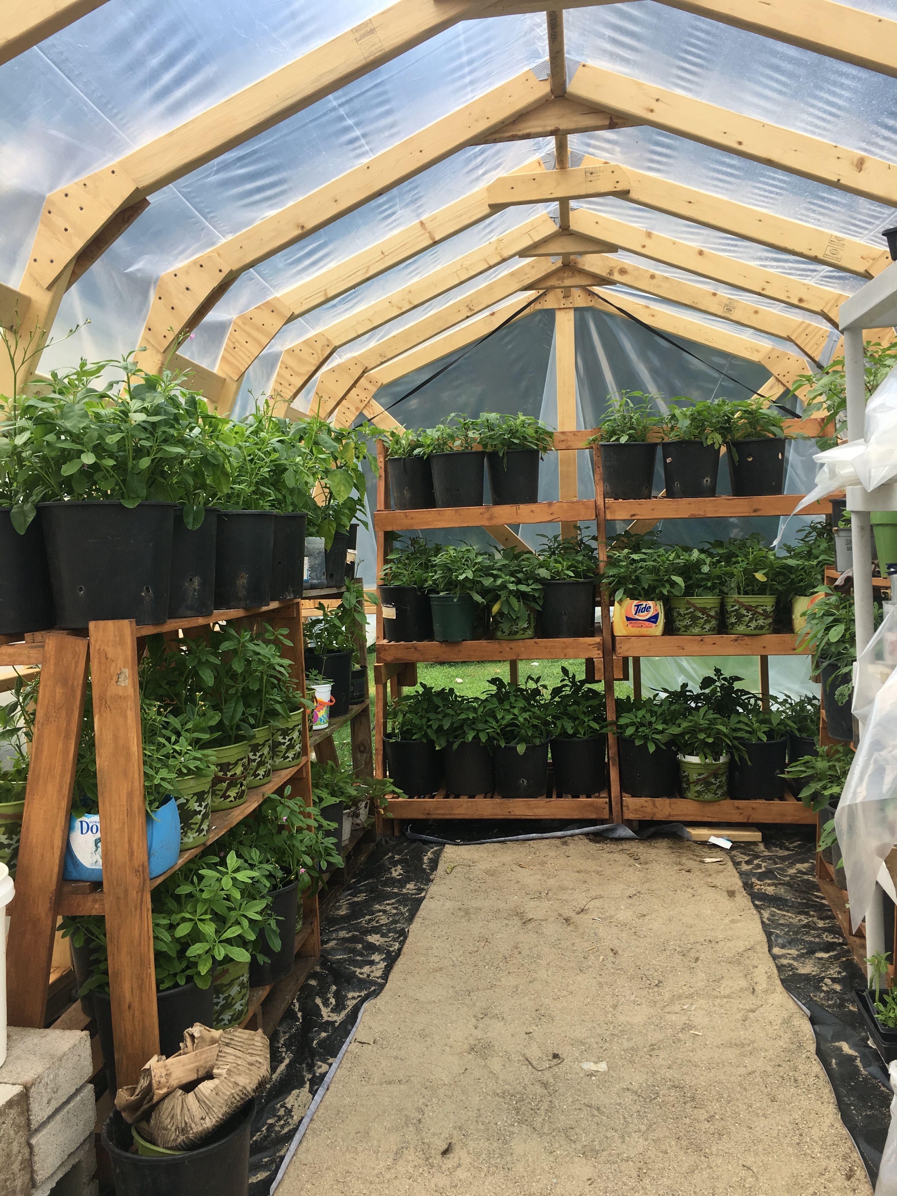 Greenhouse gardening, diy wood greenhouse, #Greenhouse, # ...