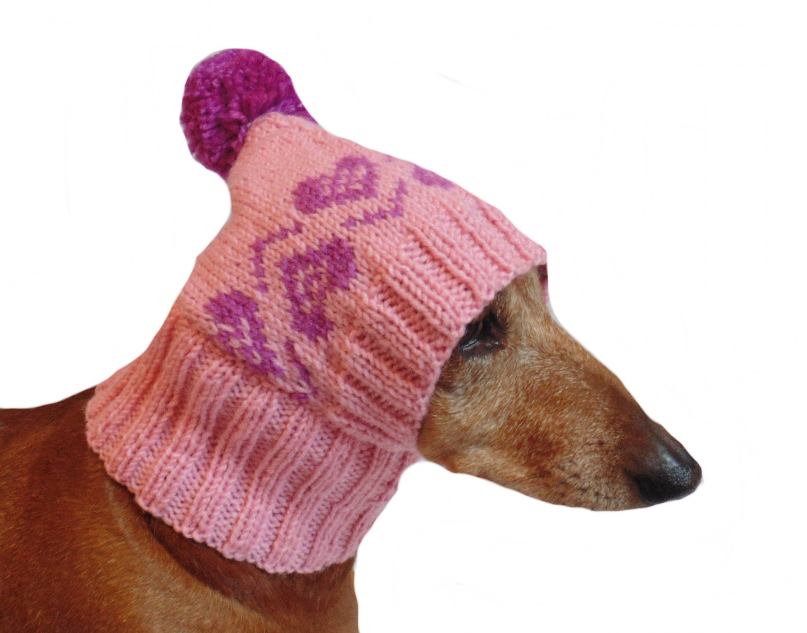 Small Dog Hat Pet Clothes Dog Hat Winter Hat Dachshund Hat
