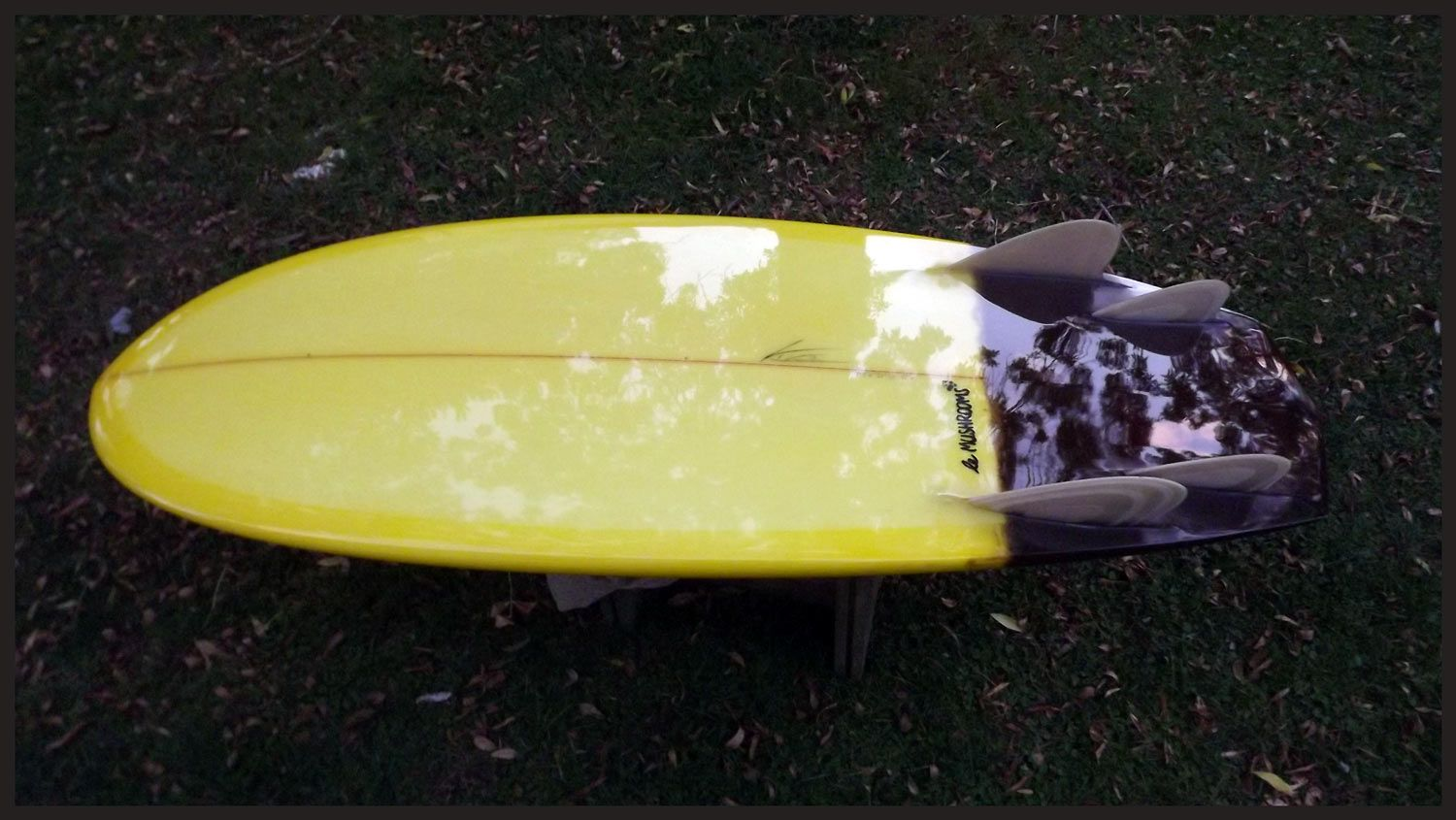 eclipse surfboards mini simmons le mushrooms model | eclipse custom surfboards