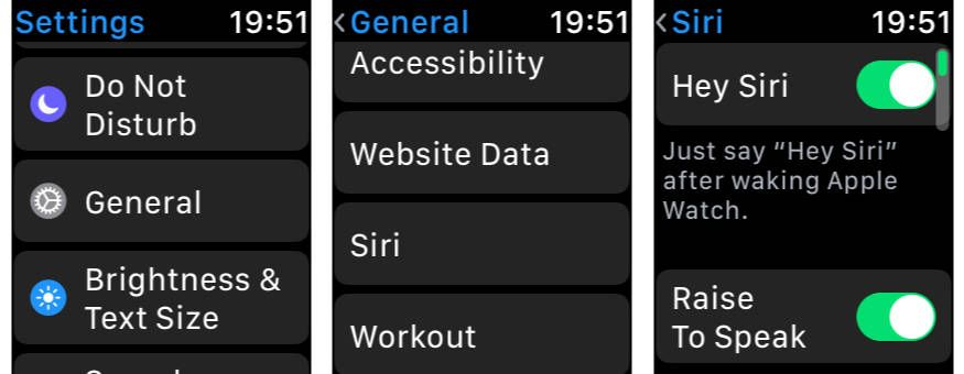 watchOS 5 How to Enable Raise to Speak for Siri on Apple