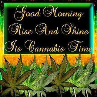 Good Morning Happy 420 Day Happy Morning Morning Rose